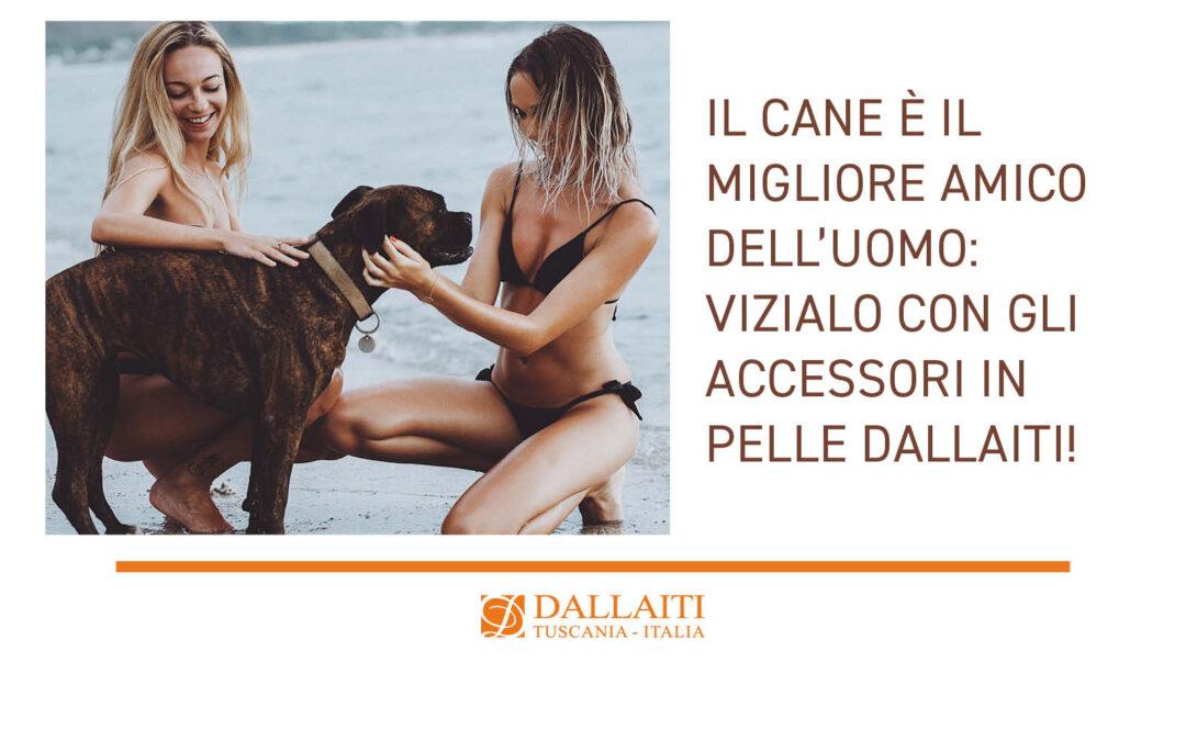 Il cane è il migliore amico dell'uomo: vizialo con gli accessori in pelle Dallaiti!