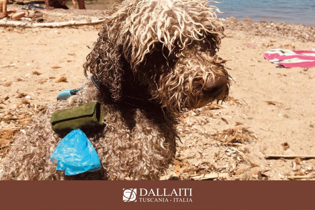 custodia portasacchetti per cane