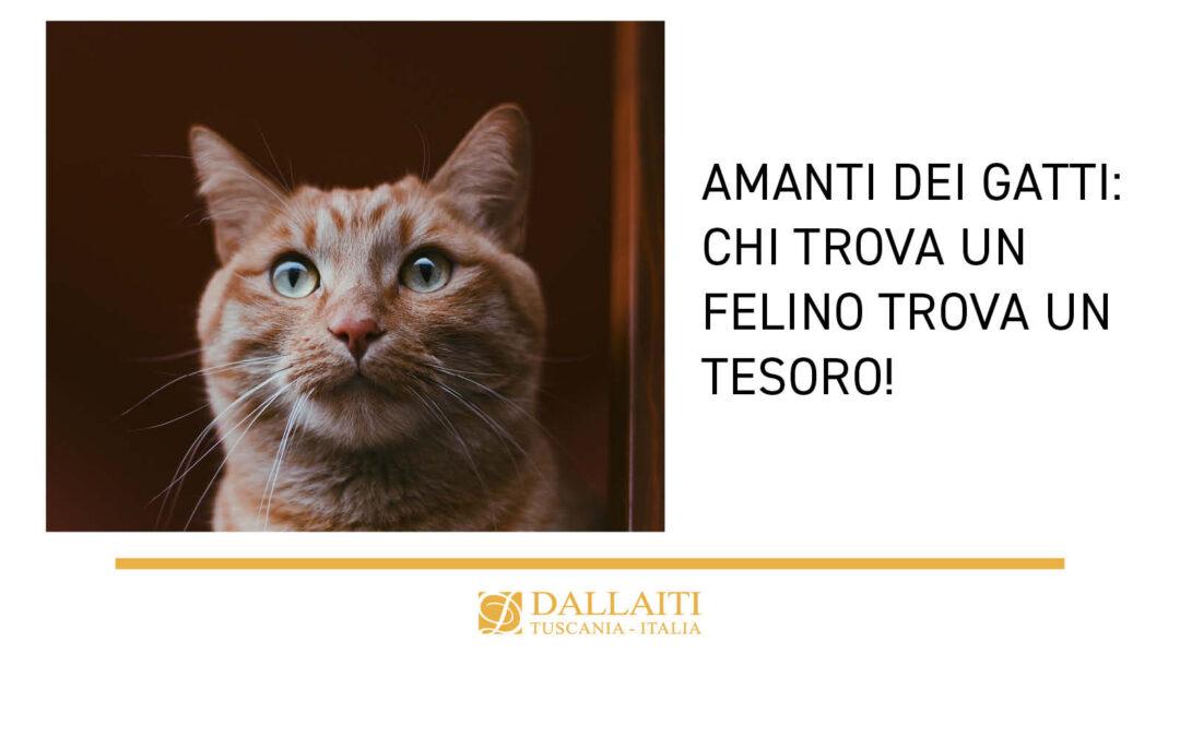 Amanti dei gatti: chi trova un felino trova un tesoro!